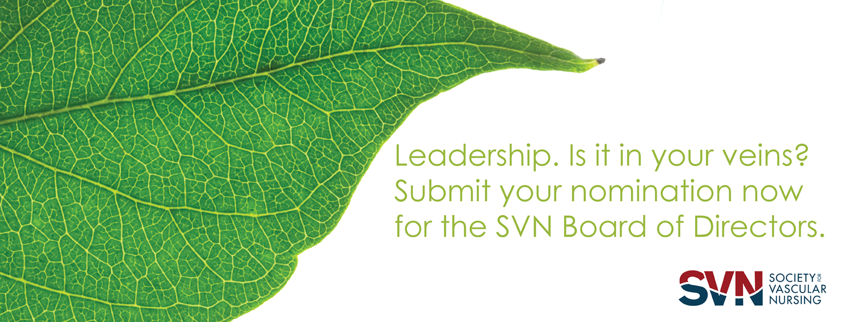 SVN Leadership 2015